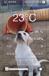 涼しいかも